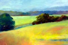 Fields and More Fields 24x36