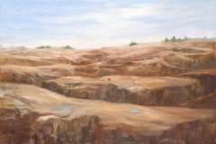 Facing the Dunes 30x40