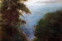 Through the Trees 16x19